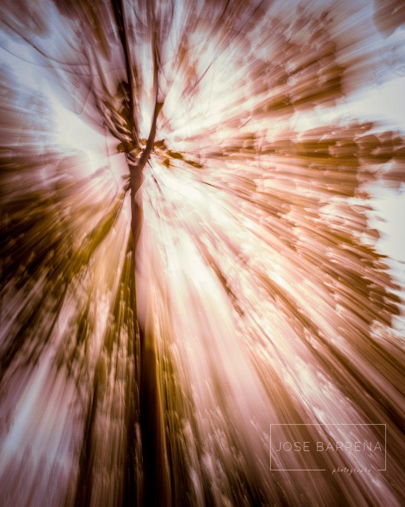 jose-barrena-diffusso-02