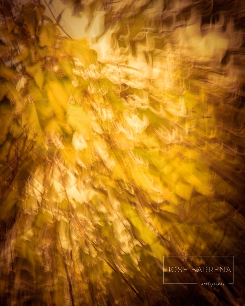 jose-barrena-diffusso-06