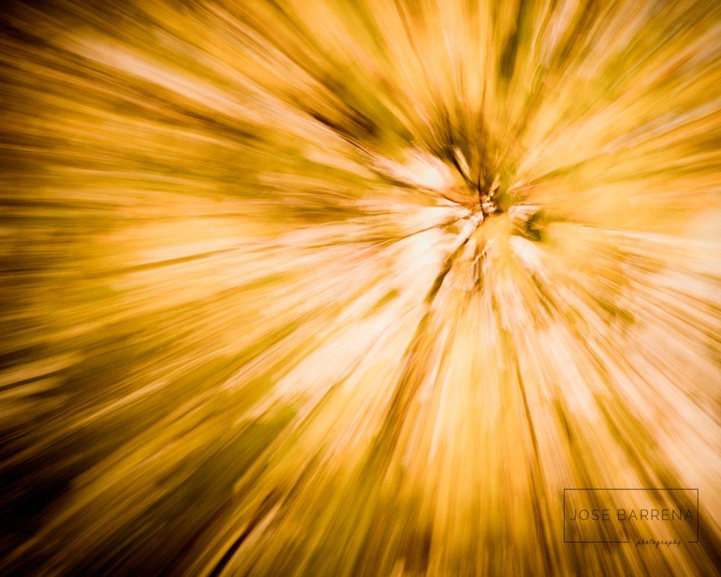 jose-barrena-diffusso-07