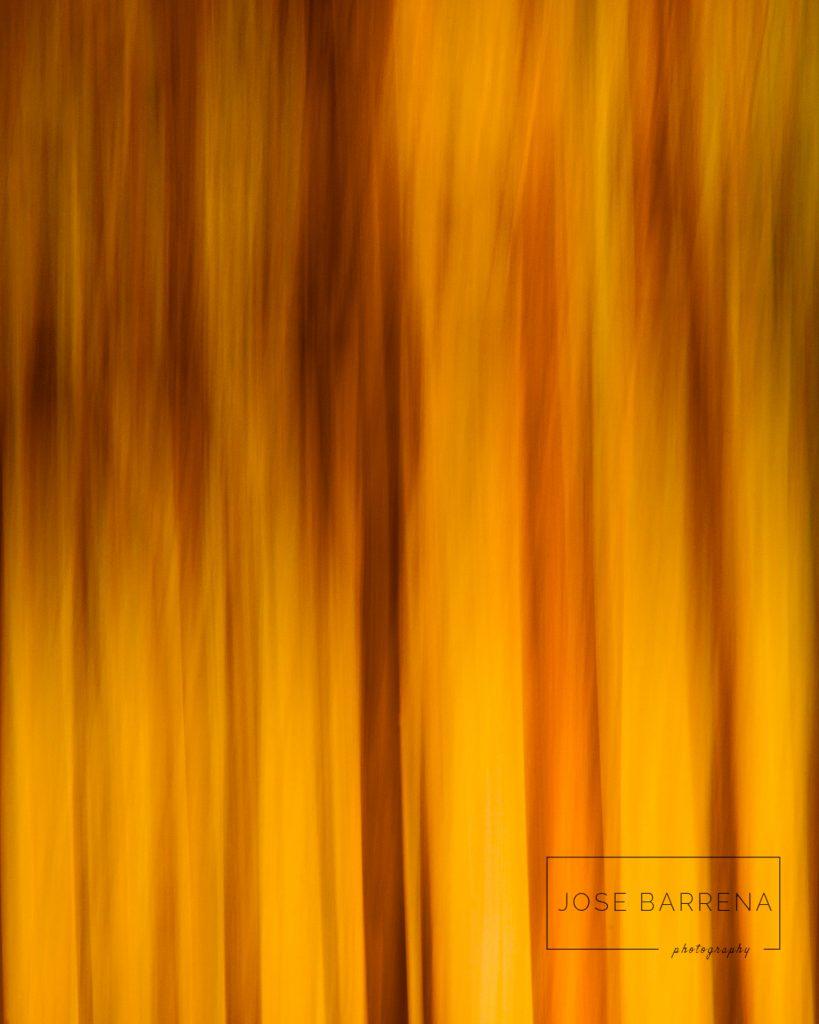 jose-barrena-diffusso-09