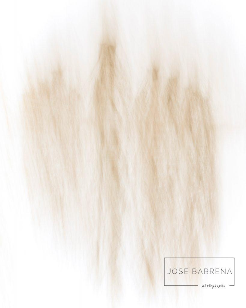 jose-barrena-diffusso-14