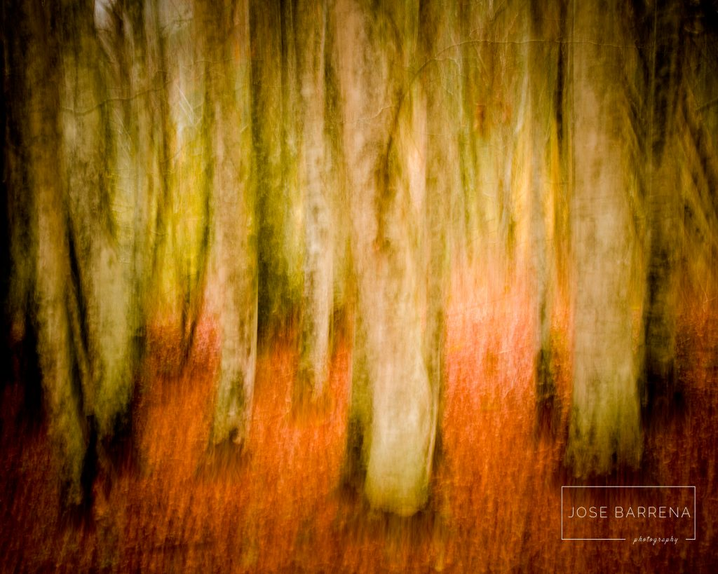 jose-barrena-diffusso-15
