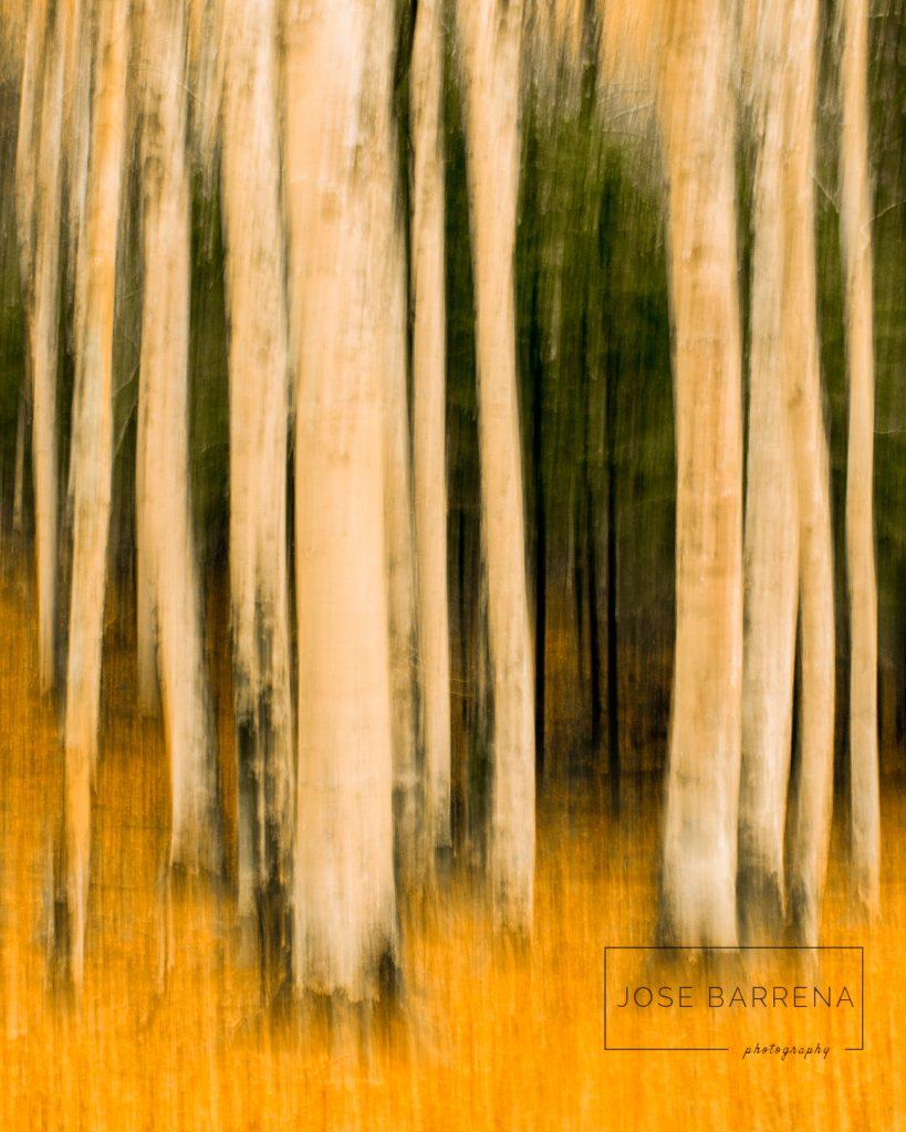 jose-barrena-diffusso-16